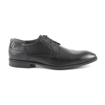 Pantofi Thezeus Men's shoes Thezeus